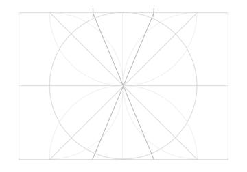 Rosette in rectangle step 14