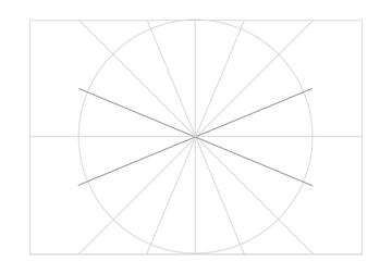 Rosette in rectangle step 16