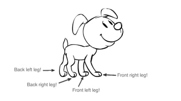 diagram of dog showing which leg is which