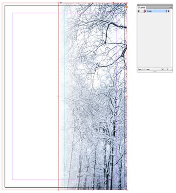 gradient applied to image