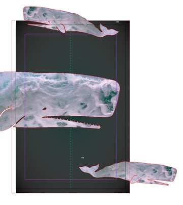 pasted whale