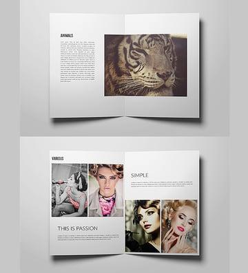 photo portfolio