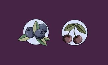 vintage fruit badges made using Illustrator texture brushes final image