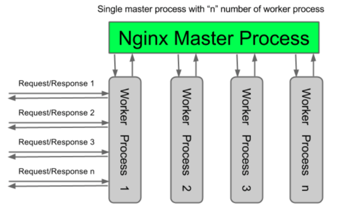 Nginx worker process topology diagram