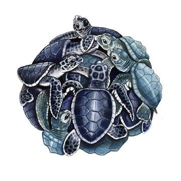 Turtles in watercolor