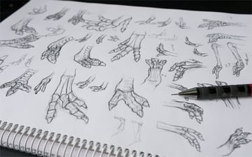 My study on dragon feet based on the American rhea the T-Rex and the emu