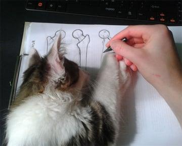 Kinzie at work