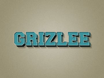 Grizlees personalized version of the text tutorial