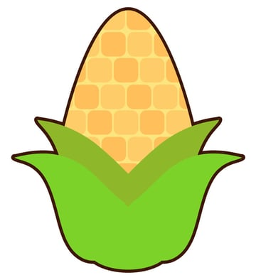 Create an outline for your corn design