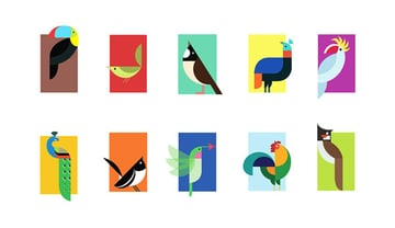 Bird Graphics Volume 3