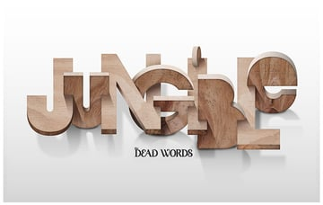 JUNGIBLE Lettering for DeadWords project