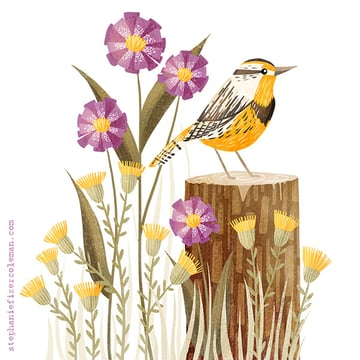 Illustration by Stephanie Fizer Colemen