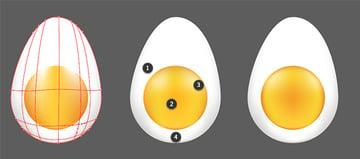 Further render the egg yolk