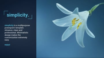 Simplicity Minimal PowerPoint Template