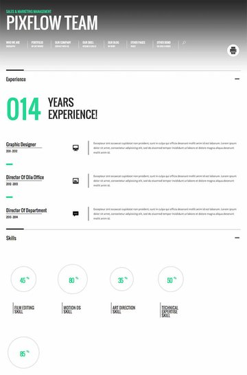 Promotion Animated WordPress CVResume Theme