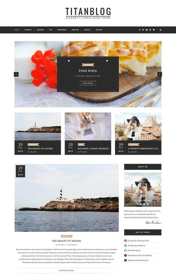 Titan - Elegant WordPress Blog Writer Theme