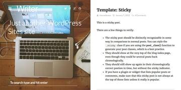Writer Professional WP Author Blog Theme