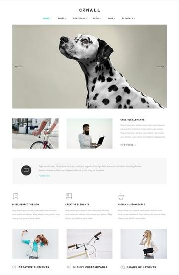 Conall Creative WP Agency Theme Design