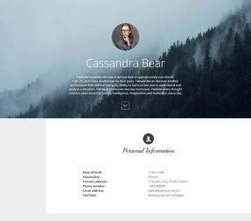 Online resume builder template
