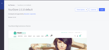 Applying your new BigCommerce theme