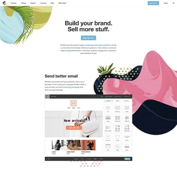 MailChimp landing page example