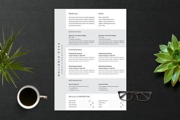 Resume Vol 16 on Envato Elements