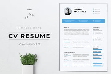 Professional CV Resume