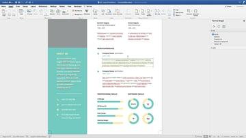 Adding custom info to the CV Resume template