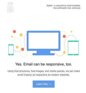Salted Responsive Email Template