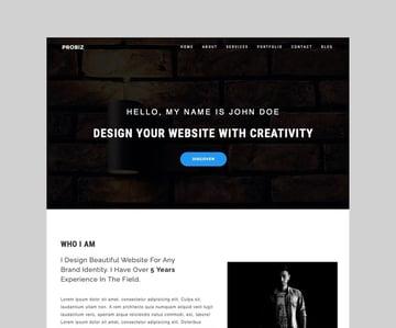 Probiz - Freelancer CV Resume WordPress Theme