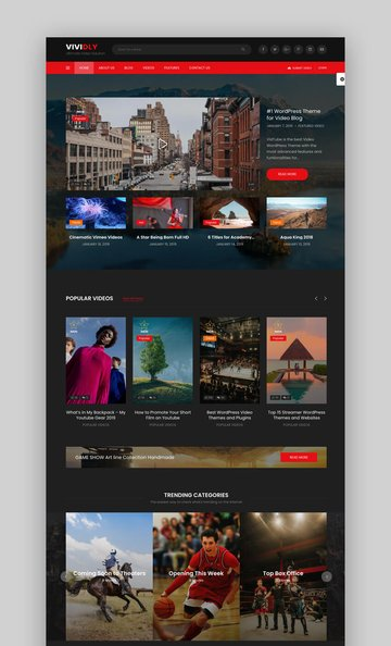 Vividly | Video Blog WordPress Theme