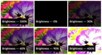 CSS Brightness Filter Effect