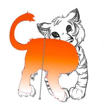 Starting the Tiger Body in Orange