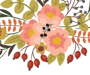 drawing berries of the black currants 1