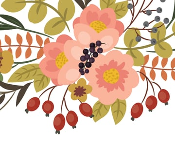 drawing berries of the black currants 2