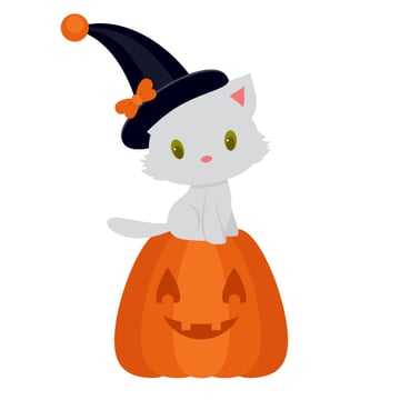 placing kitty on the pumpkin
