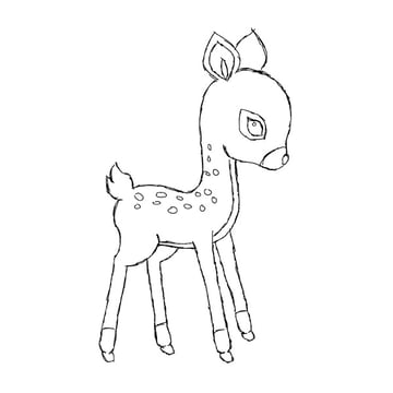 drawing the fawn sketch