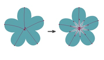 drawing flowers of forget-me-nots