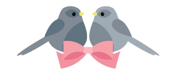placing the birds and bow together