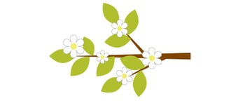placing the flowers on the branch