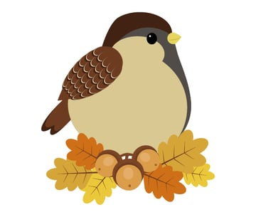 aading the sparrow to the leaves-acorns arrangement