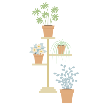 placing plants on the plant stand