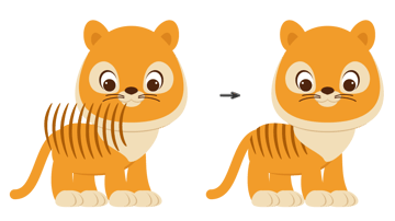 placing the stripes on the body