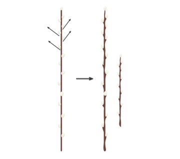 making the branch more natural