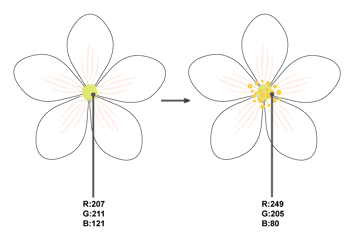 how to create the stamens