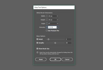 Warp Tool Options window