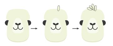 how to create the bangs