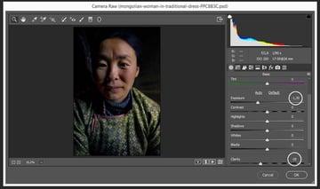 adding the camera raw filter