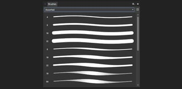 selecting the brush from the brush panel