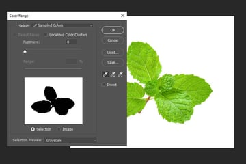 selecting the image with color range